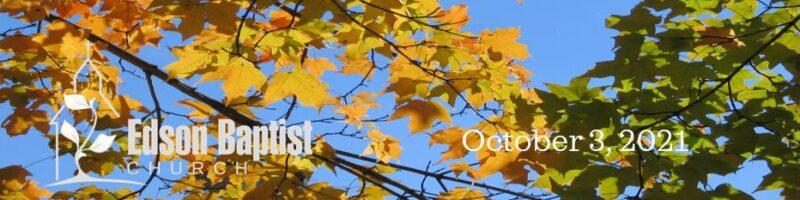 Oct 3 WordPress
